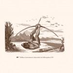 extraits-detournements-galerie-02