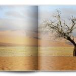 paysages-decressac-p-132-133-pano