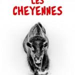 Plat 1 « Les cheyennes »