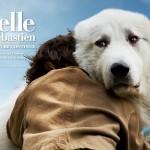 Plat 1 « Belle et Sébastien »