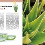 L'Aloe vera est-il bon pour la peau ?